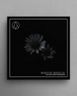 Artwork For Winter Breeze - A Trap Soul Loops Pack